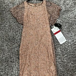 Adrianna Papell Beaded Special Occassion Dress